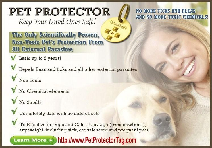 Pet Protector | about.me